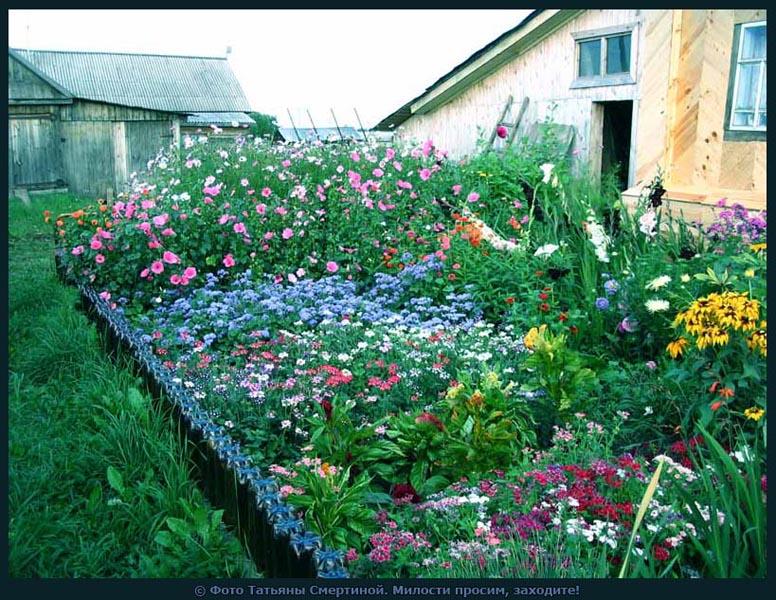 И вся технология украсить свой сад